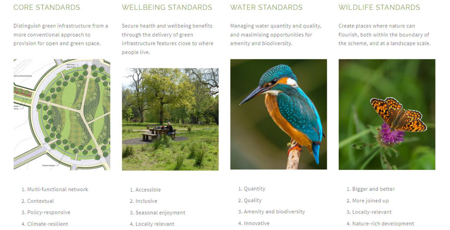 Building With Nature Standards